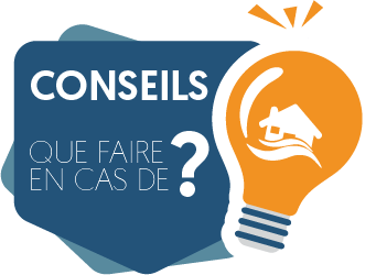 ICON-CONSEILS
